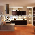 Koyu kahve fransız mutfak tasarımları