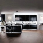 Modern siyah beyaz mutfak tasarimi