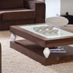 Modern tasarımlı cam bölmeli orta sehpa modelleri