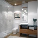 En son banyo tasarımları