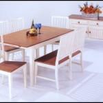 Tekzen yemek odası modelleri 2020