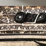 Klasik desenli kumaşlardan yapılmış italyan tasarım kanepe modeli